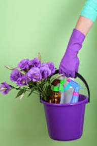 spiritualcleaningbucketflowers copy