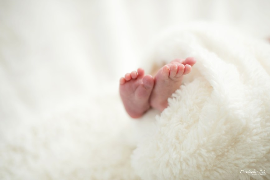 Newborn Baby Boy Little Curled Feet Closeup Wrapped in White Fluffy Blanket