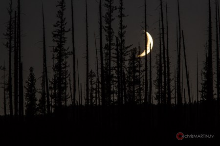 Dead Moon, Glacier National Park, MT
