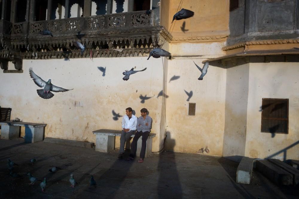 Bench, Udaipur