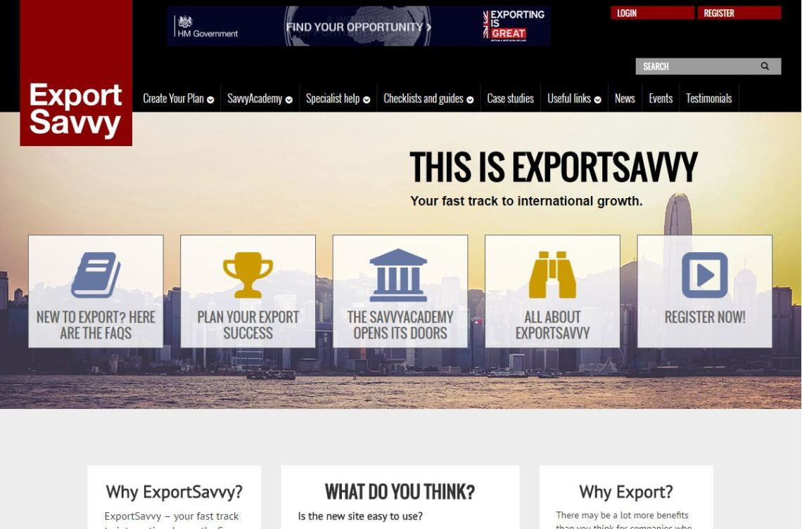 Export Savvy Website