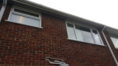 Windows at the Back