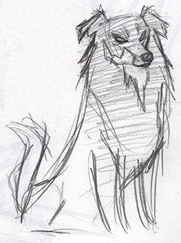 Animal Farm: English Shepherd Character Study