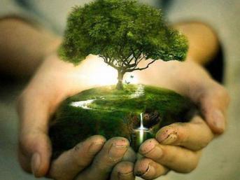 Build a legacy - plant a tree