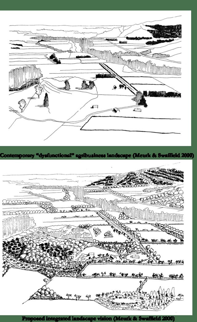 Swaffield Landscapes