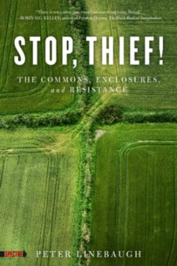 Linebaugh-Stop-Thief