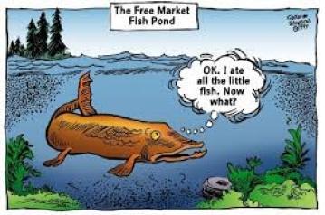 Free market fishpond