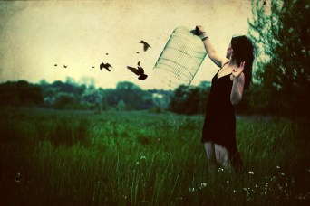 Freeing the caged birds