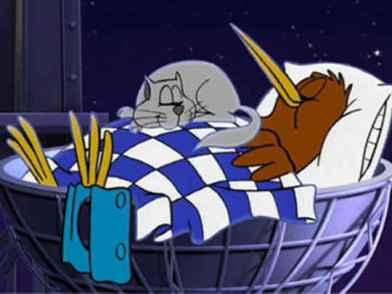 Goodnight Kiwi