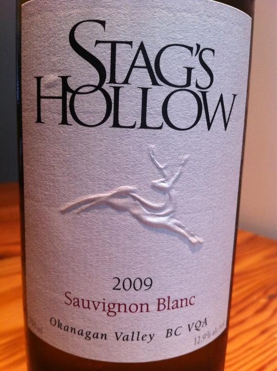Stag's Hollow 2009 Sauvignon Blanc