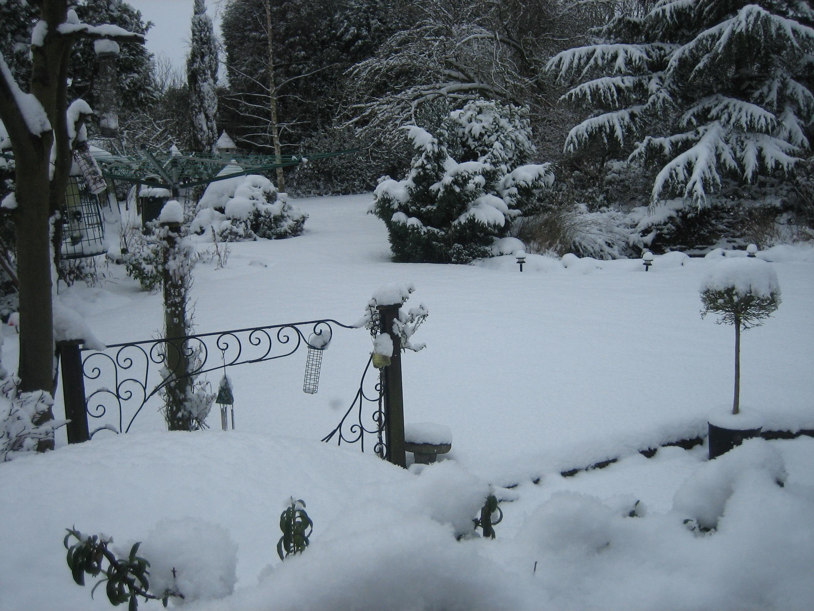 winter wonderland from my studio