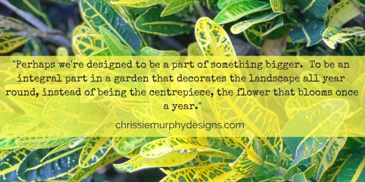 Quote by Chrissie Murphy Designs on blooming as an artist