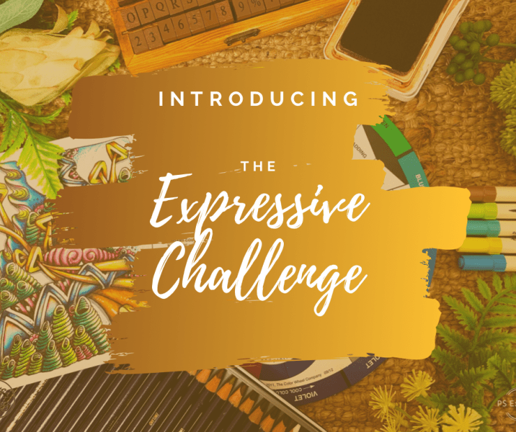 Introducing the Expressive Challenge