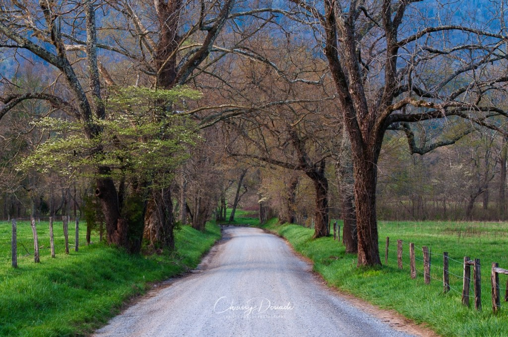 Sparks Lane in Cades Cove of the Great Smoky Mountains National Park