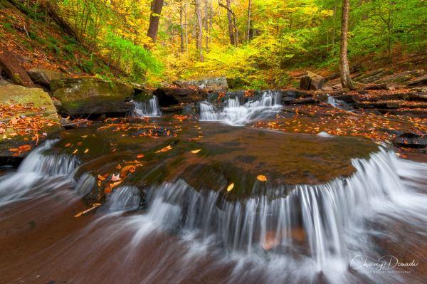 Landscape Photography Advice for Autumn Blog Post by Landscape Photographer Chrissy Donadi