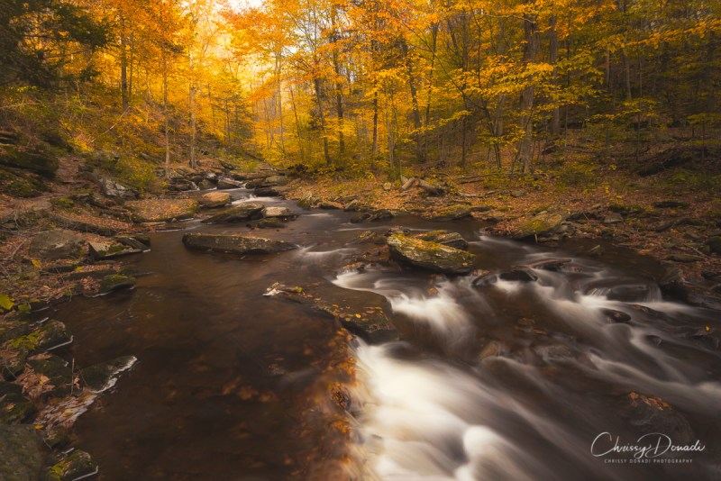 Choosing the Best Travel Days to Photograph Fall Foliage Blog Post by Chrissy Donadi