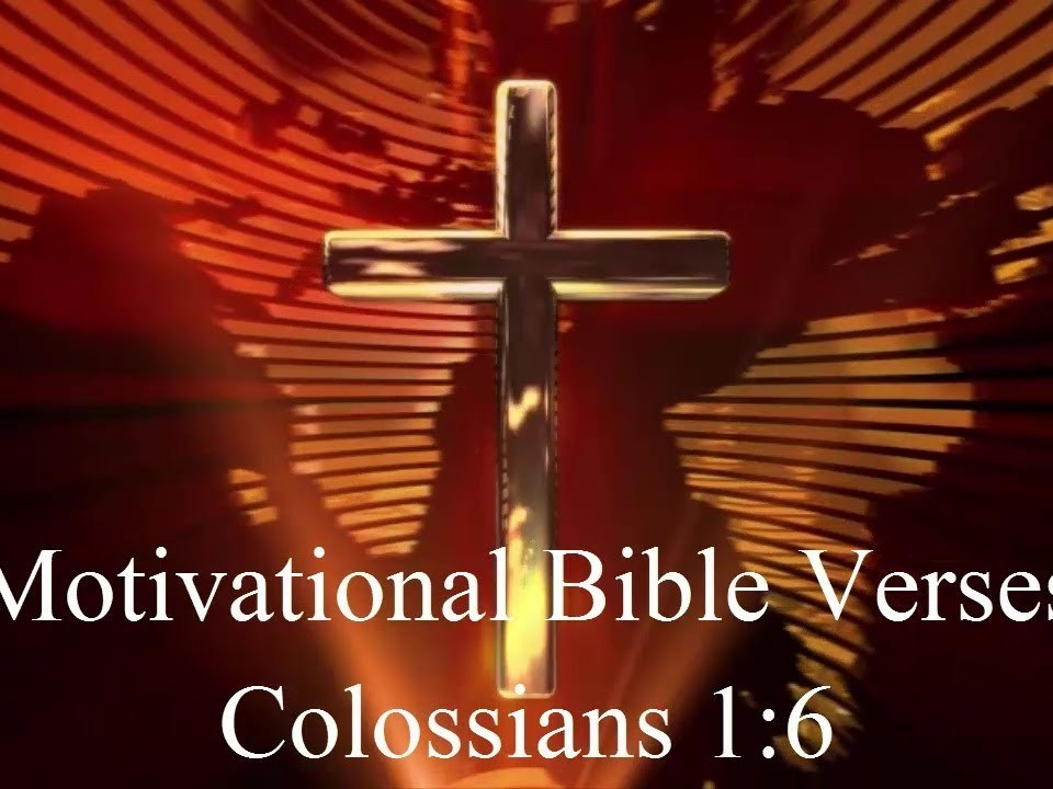 Bible Verses on Gospel | Colossians 1:6 | Bible verse of the day