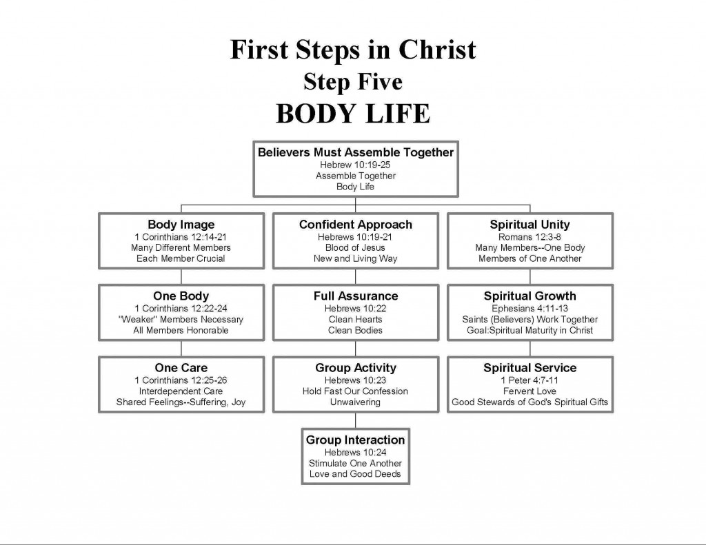 First Steps In Christ Step Five Body Life