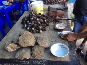 Oysters and Clams Roadside La Playa Ecuador