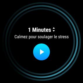 image Test de la Ticwatch Pro 3 GPS : La montre connectée avec 2 écrans 46