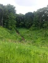 Around Belle Plaine MN Teien (75)