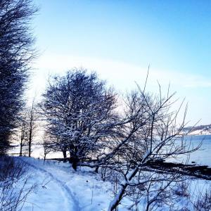 Walking in the Snow - a treasure of inspiration