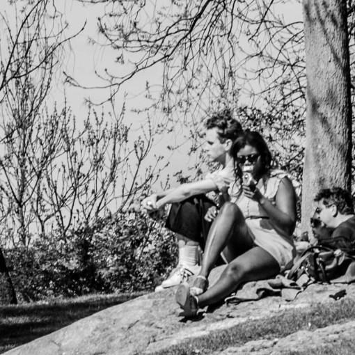 Människor i park i Stockholm