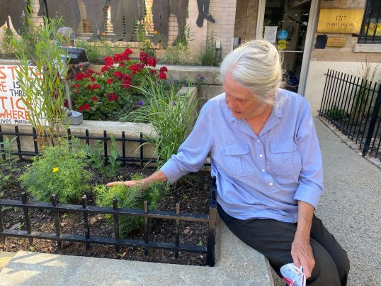 Sandra, a volunteer, looks lovingly at the garden beds.