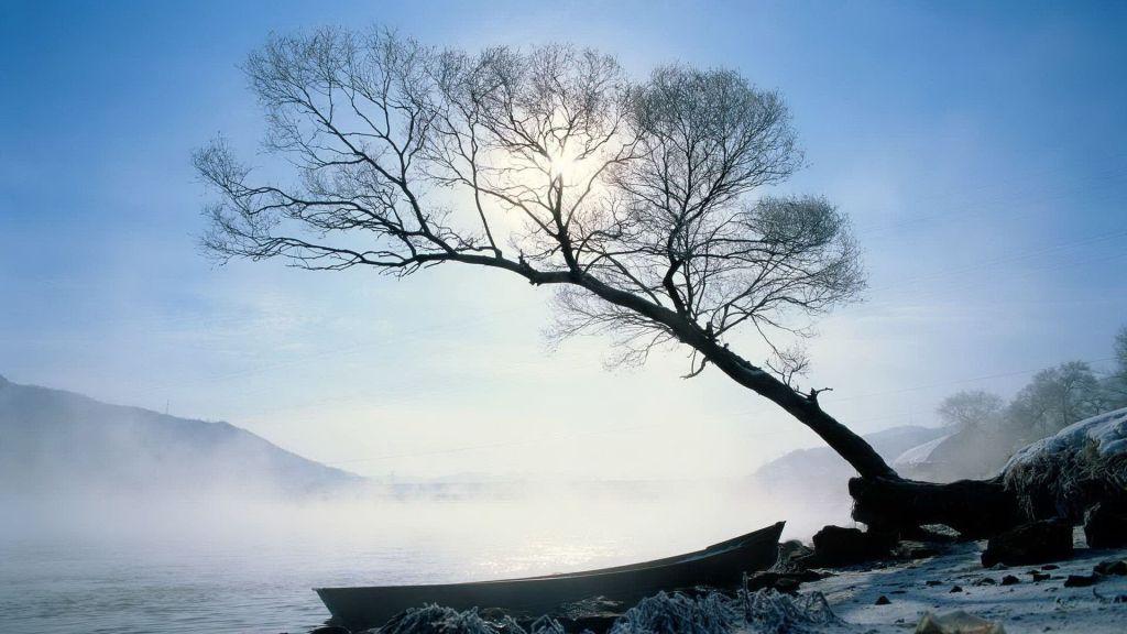 Cold Serenity