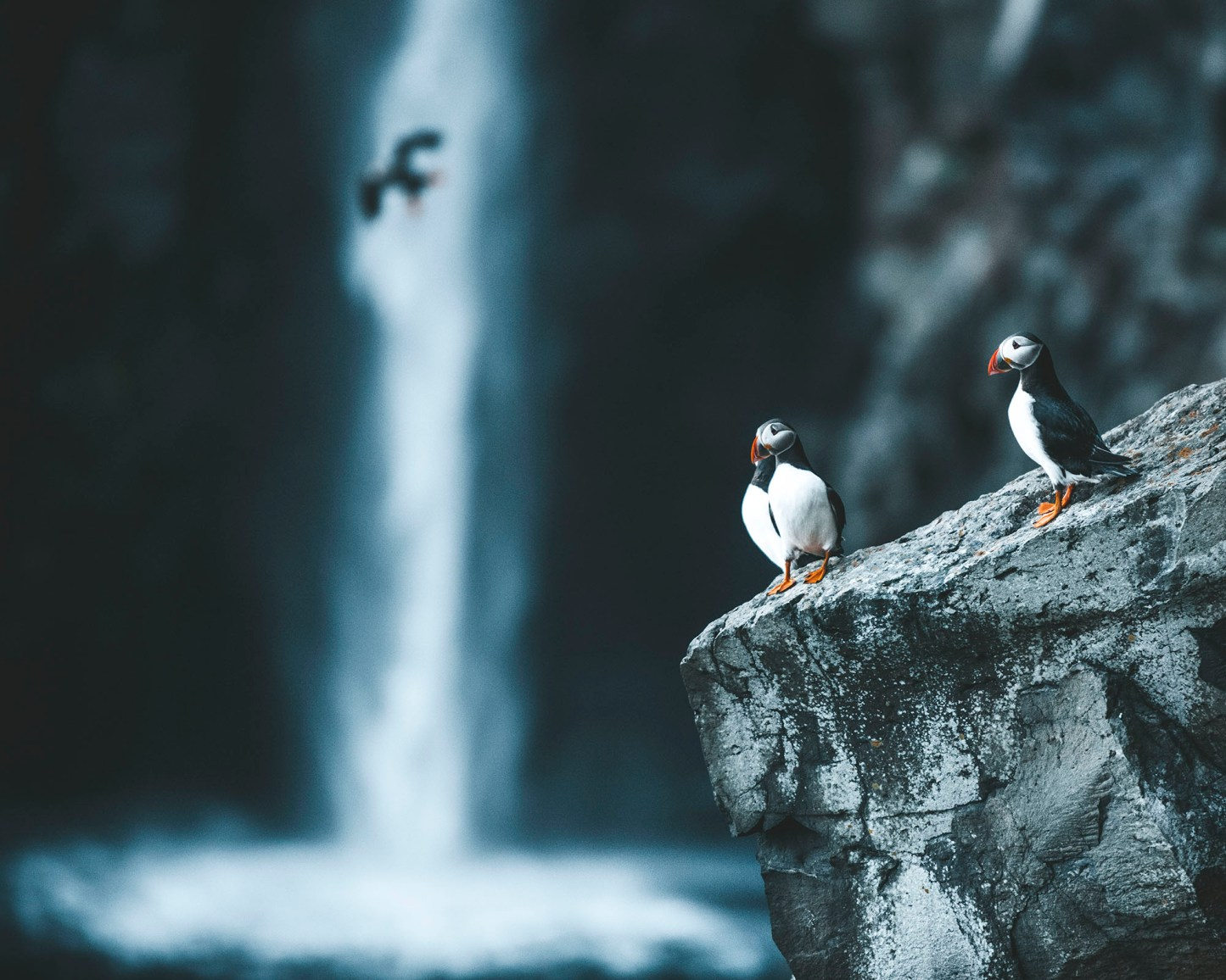 Gásadalur / Múlafossur, Faroe Islands