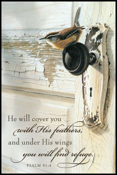 Sheltered by God's Love