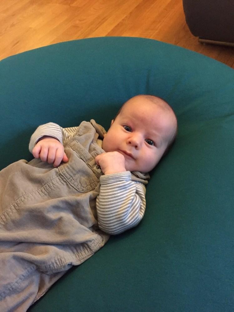 Linus auf SEINEM neuen Kissen