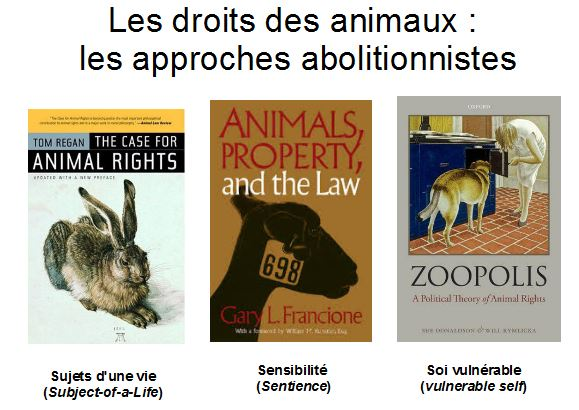 droits des animaux approches ethique animale contemporaine