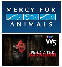 mercy for animals behind barn doors