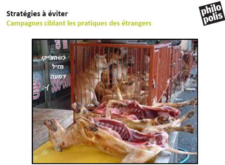 viande de chien