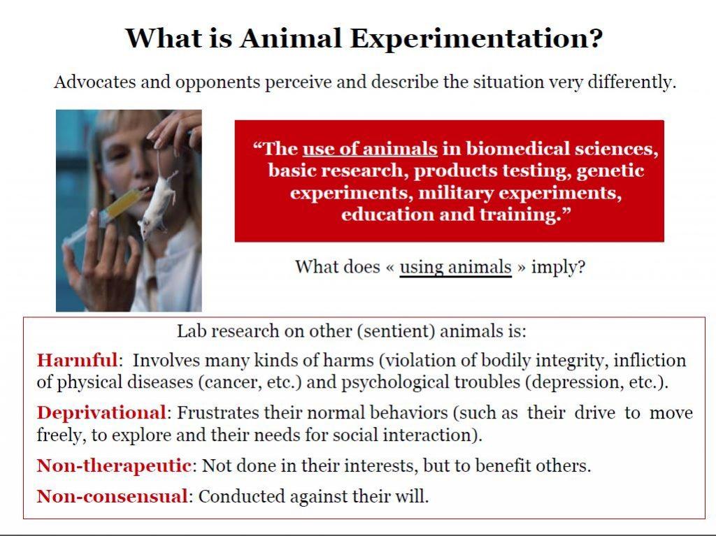 Ethics of Animal Experimentation Bailey