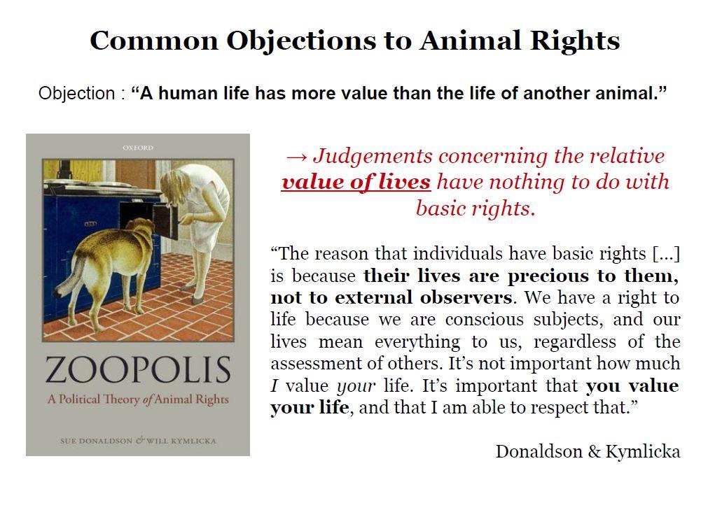 Ethics of Animal Experimentation Bailey6