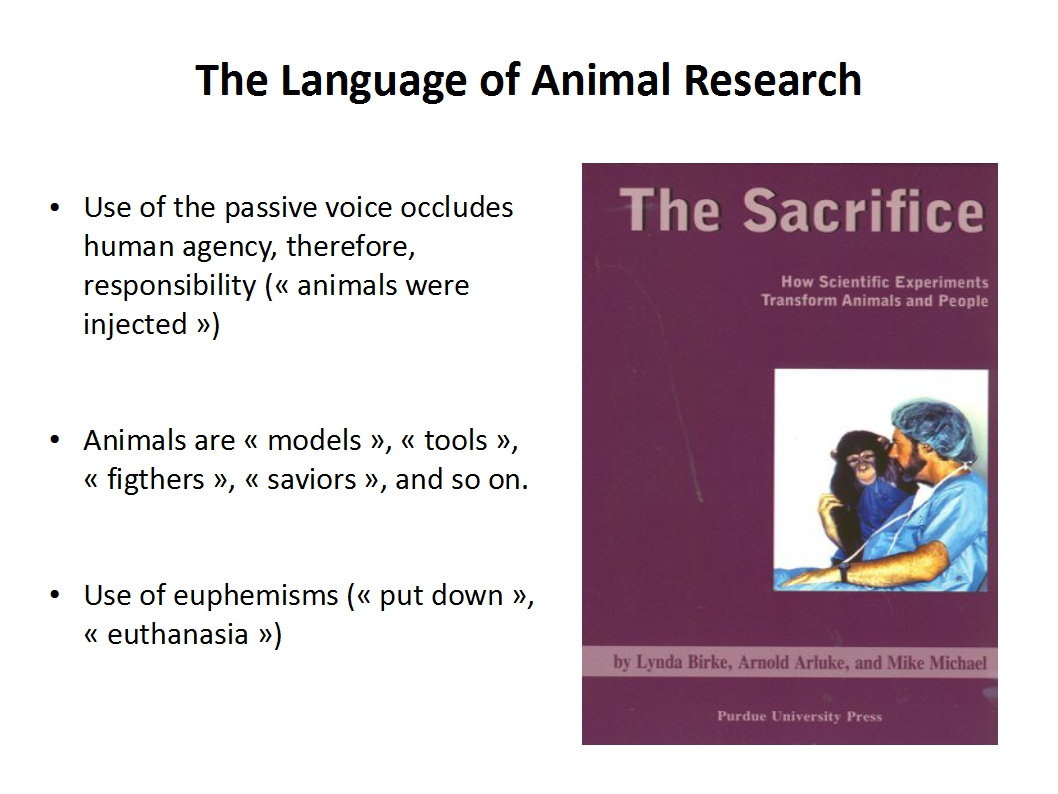 Presentation Animal Experimentation Bailey 2015_rhetorics