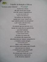 Poesia 7ºC 1