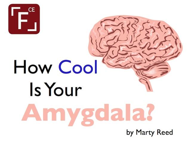 how cool is your amygdala focus on christian education