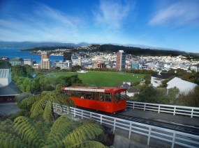 Wellington 01