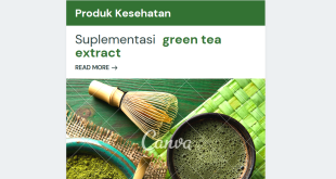 Green Tea Alias Teh Hijau