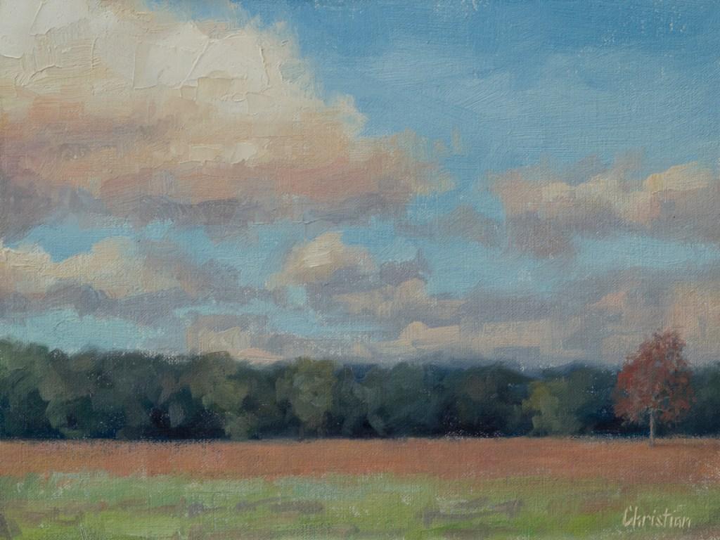 #O195_November_Morning_Clouds_Plein_Air_9x12