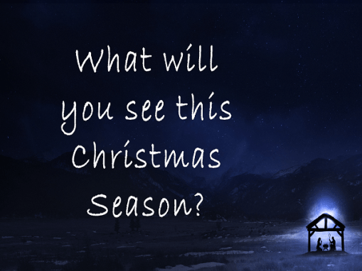 What will you see this Christmas Season?
