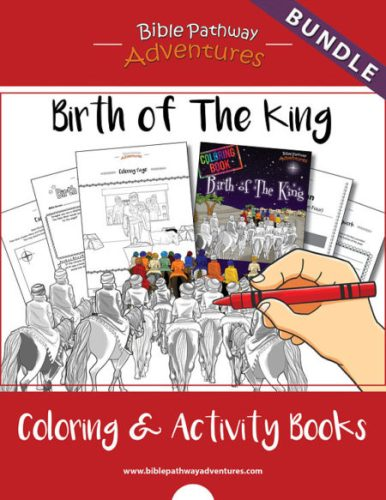 Instant Birth of Jesus Activity book for kids