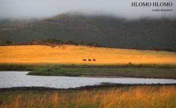 The Homo Hlomo Mountain in the Mist