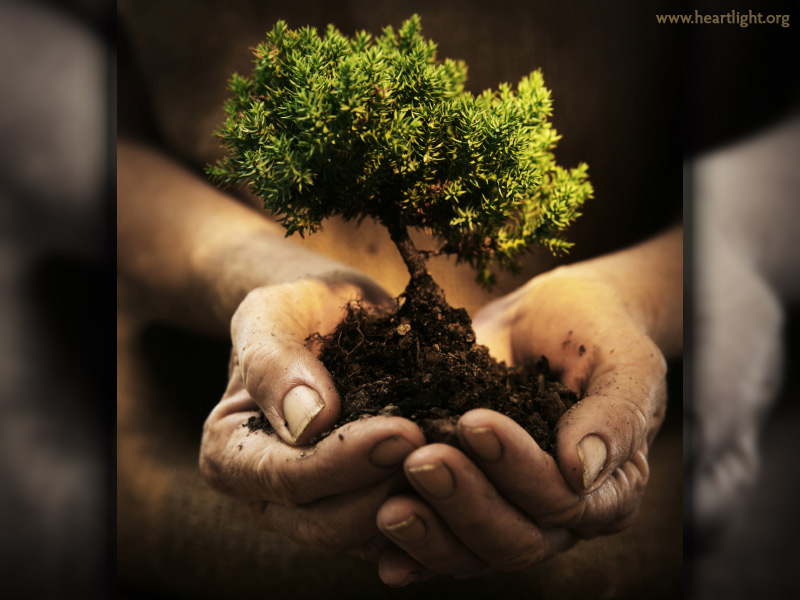 Evidences of Knowing God (Part 2)