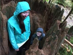 Tryon Creek Hike