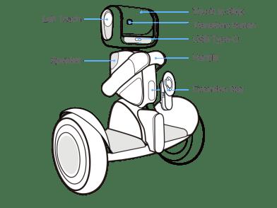 pic_back_robot