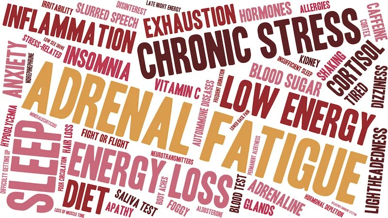 Cortisol and Weight Gain – How Stress Affects Weight, Health & Mood and Tips to reduce cortisol quickly